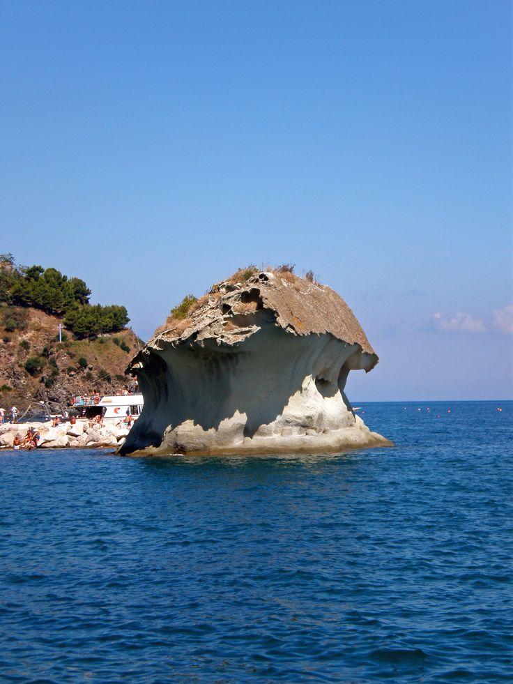 Fungo, Lacco Ameno Ischia foto via google