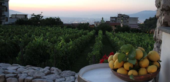 Corbara Excellent celebra il territorio a Borgo Giulia