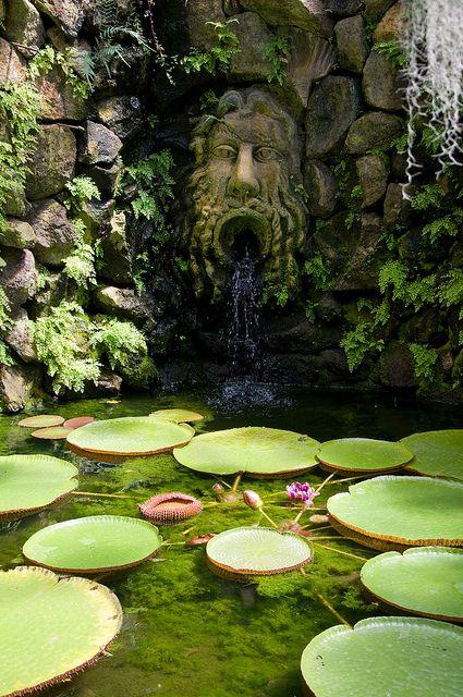 Piccola guida per innamorarsi di Ischia giardini La Mortella