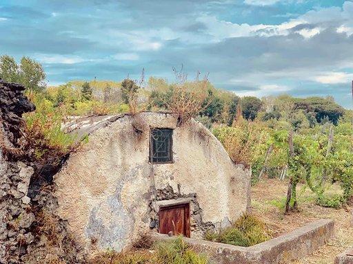 vendemmia-munazei-sul-vesuvio-casa-setaro-vino-winery-visit-campania