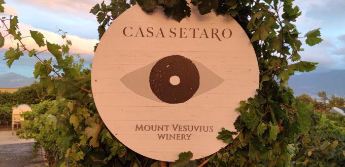 vigneron casa setaro vendemmia vino vesuvio cantina winery visitcampania